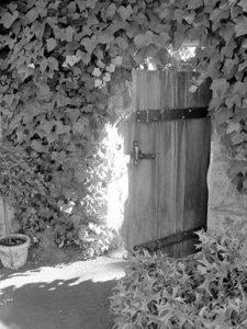 Castle Grove gate