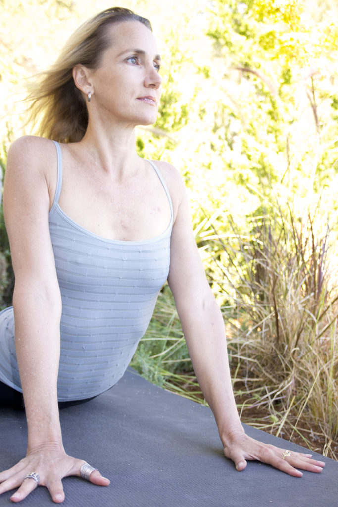 Sarah Powers, Insight Yoga Institute