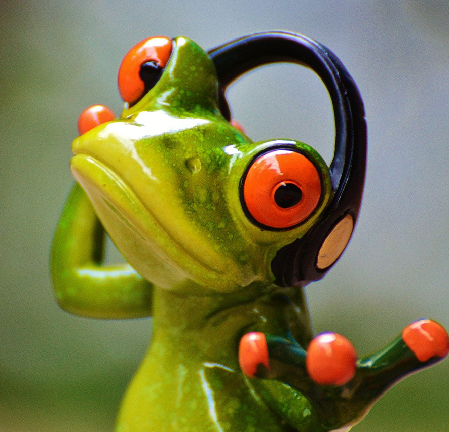 Coulorful frog wearing headphones