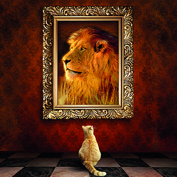 Cat looks at lion Hoffman Living Your Process